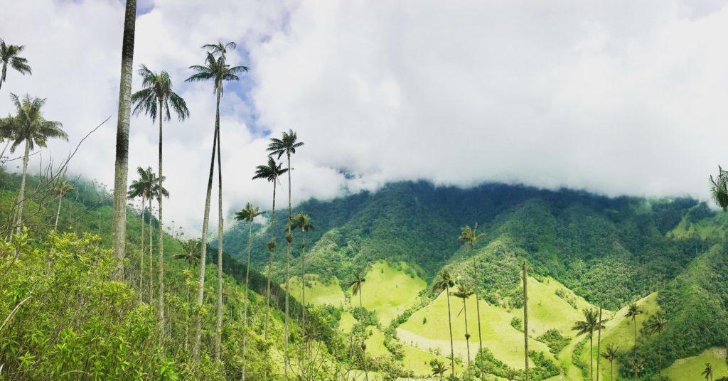 valle de cocora 2