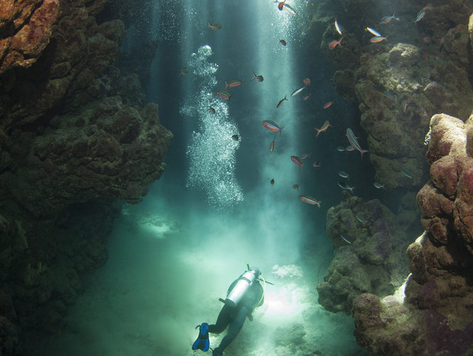 Diving In Mexico